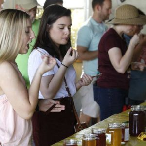 Honey Contest entries being sampled by visitors.