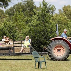 Tractor pulling trailer for hayride.