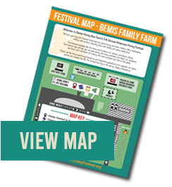 Thumbnail image of current festival map with 'View Map' button.